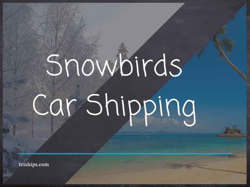 Snowbirds Car Shipping